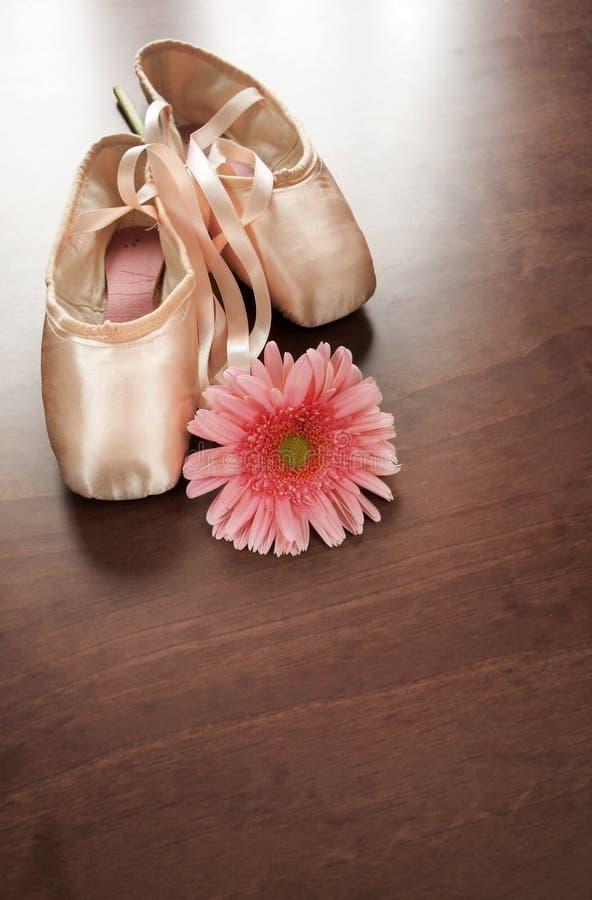 kwiaty, buty zdjęcie stock
