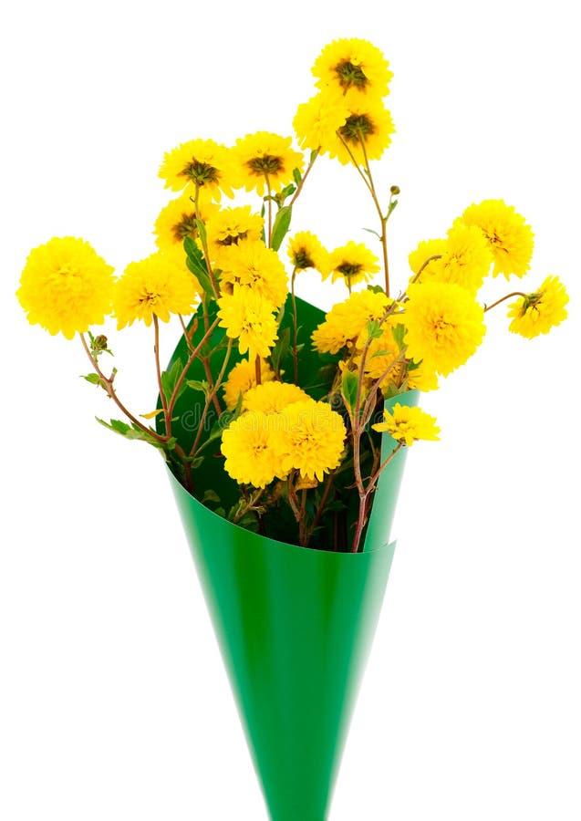 Kwiaty chryzantema i koloru karton zdjęcie stock