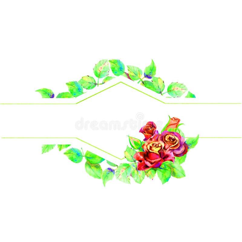Kwiaty ciemne r??e, zieleni li?cie, sk?ad Horyzontalna ramowa orientacja Poj?cie ?lubni kwiaty ilustracja wektor