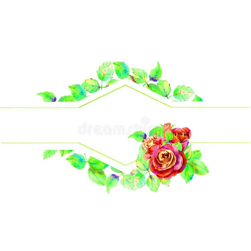 Kwiaty ciemne r??e, zieleni li?cie, sk?ad Horyzontalna ramowa orientacja Poj?cie ?lubni kwiaty ilustracji