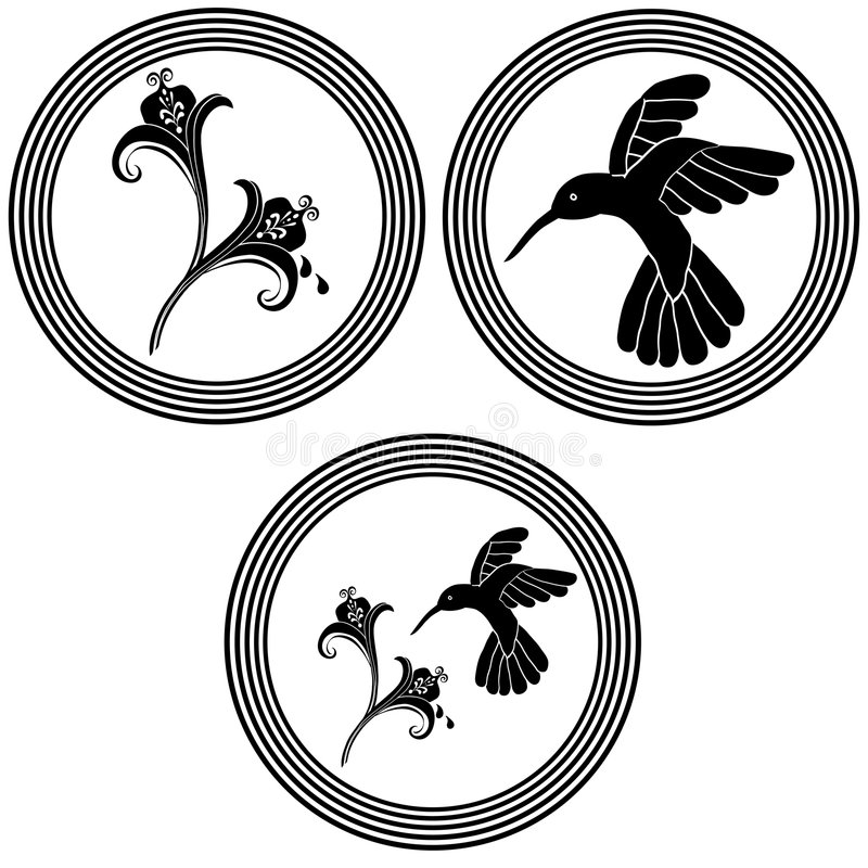 kwiaty dekoracji kolibra ilustracji
