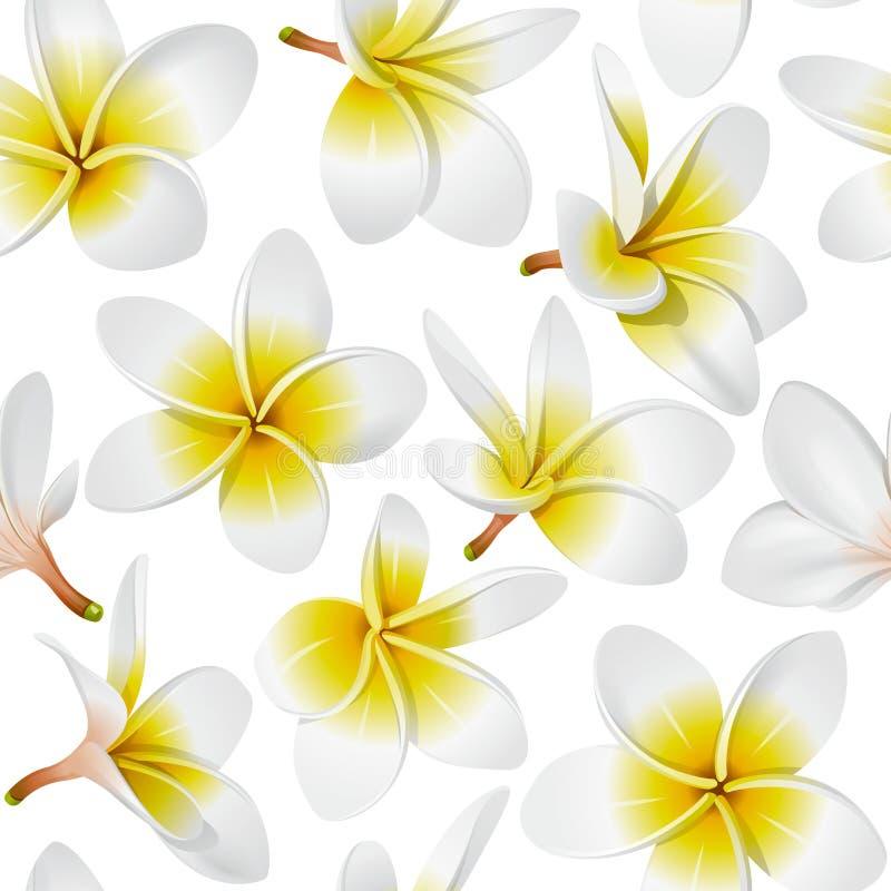 kwiaty deseniują bezszwowy tropikalnego royalty ilustracja