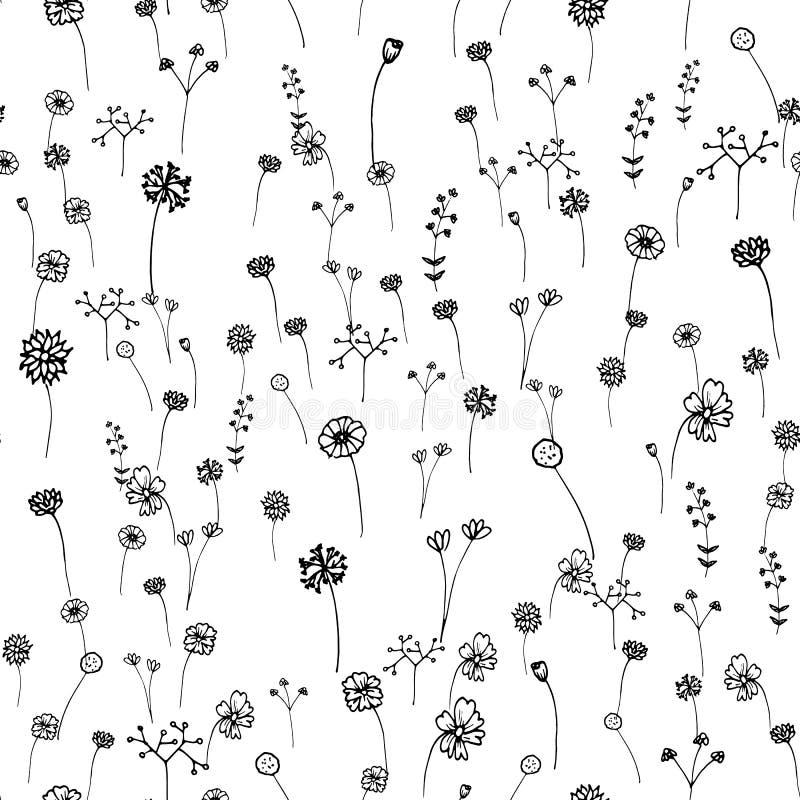 kwiaty deseniuj? bezszwowego Ręka rysujący konturu uderzenie Sztuki i abstrakta pojęcie Kwiecisty i natura temat Cienki kreskowy  ilustracji