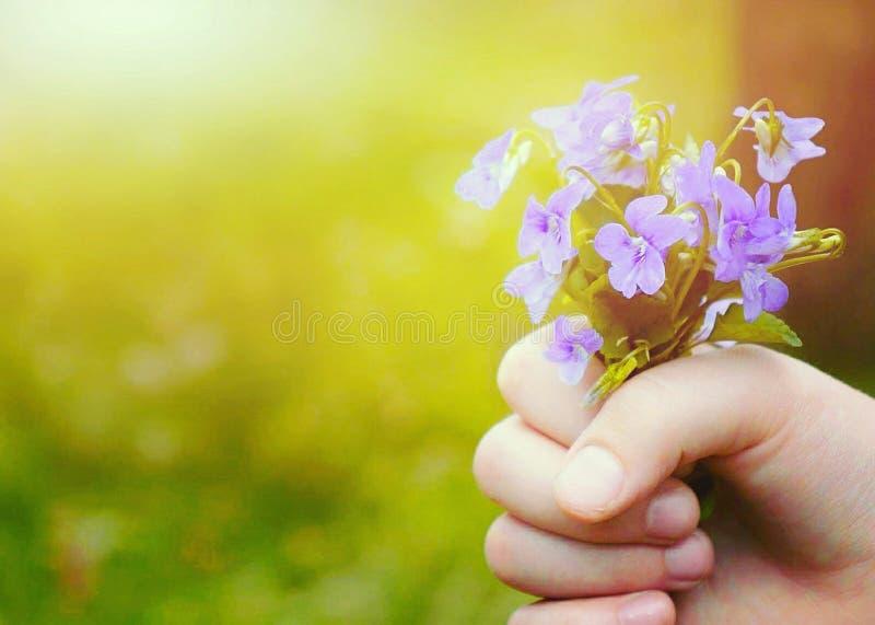 Kwiaty dla matka dnia obrazy royalty free