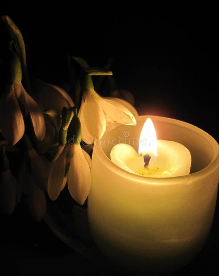 Kwiaty i świeczka obrazy stock