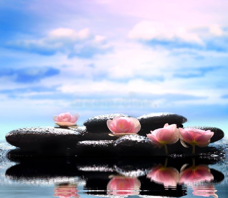 Kwiaty i czerń kamienie Zdroju pojęcie zdjęcie royalty free