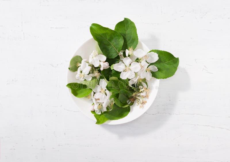 Kwiaty i liście jabłoń na szarym drewnianym tle obraz royalty free