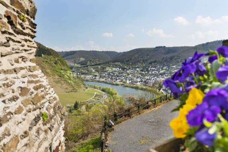 Kwiaty I Moselle dolina, Niemcy zdjęcie royalty free
