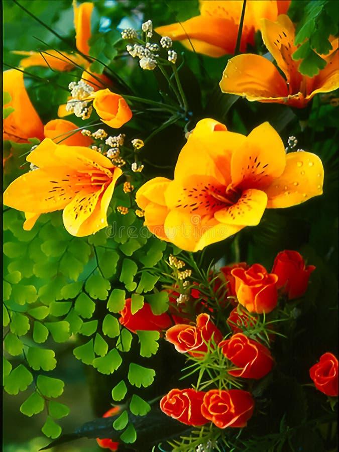 Kwiaty i paprocie obrazy stock