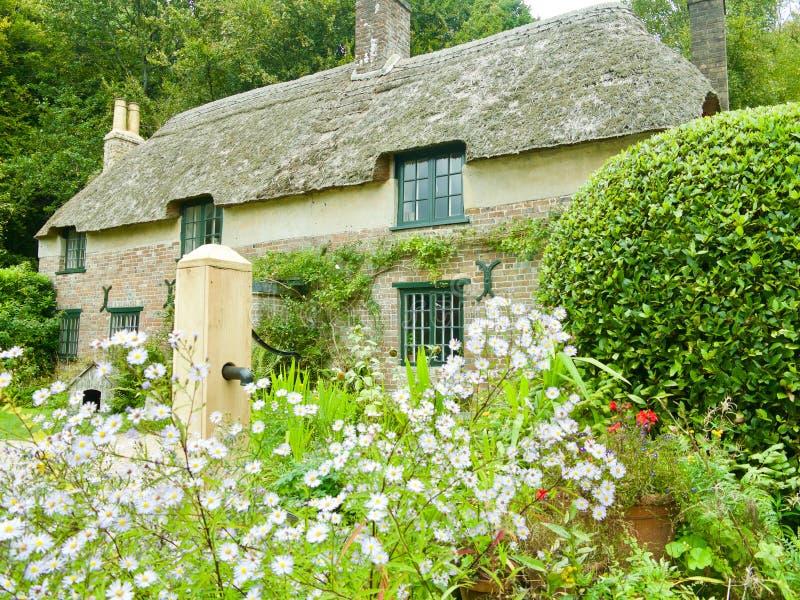 Kwiaty i Thomas Hardy chałupa zdjęcia royalty free