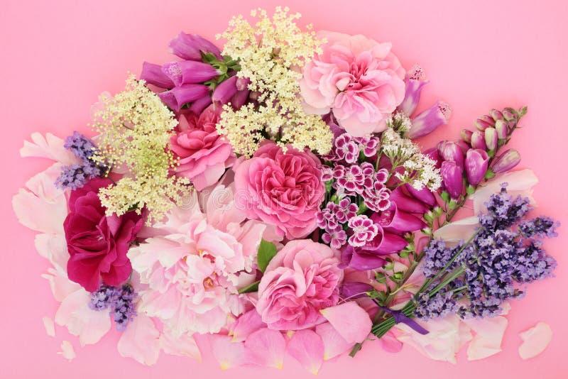 Kwiaty i ziele dla Ziołowej medycyny zdjęcia stock