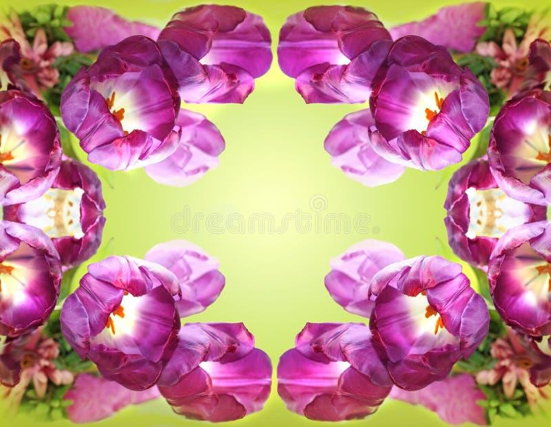 kwiaty kalejdoskop zdjęcie stock