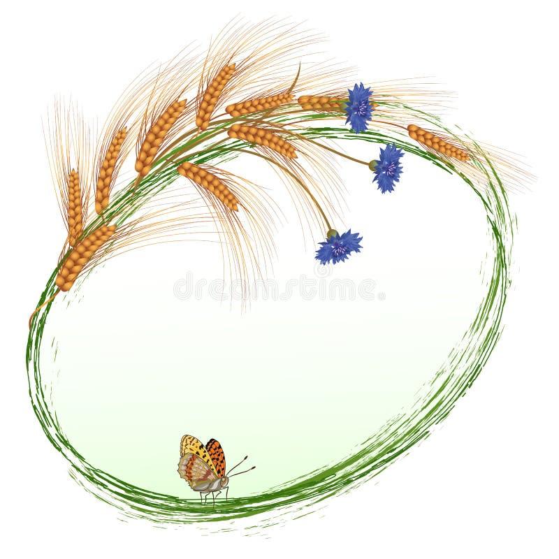 Kwiaty, motyl i ucho banatka, ilustracji