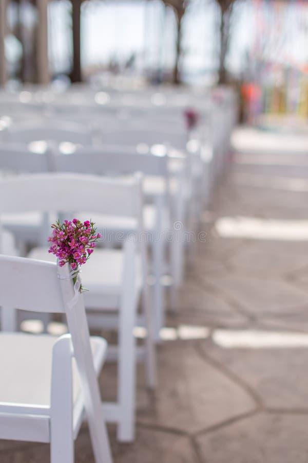 Kwiaty na krześle zdjęcie royalty free