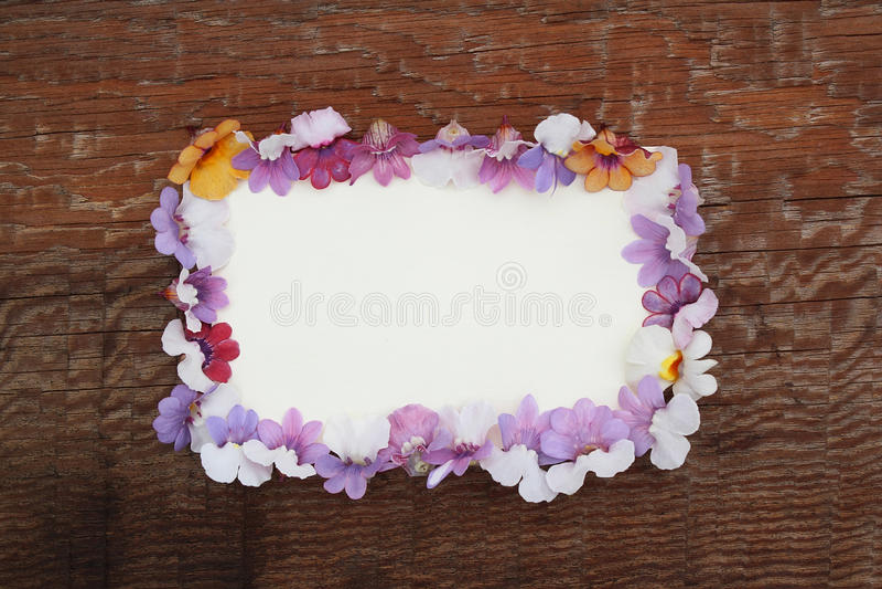 Kwiaty nemesia i opróżniają papier formę na drewnianym backgro obrazy stock
