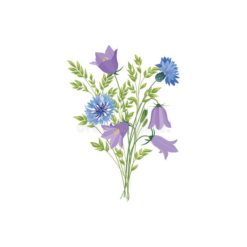 kwiaty odizolowane Kwiecisty lato bukiet Łąkowy natura wystroju dowcip ilustracja wektor