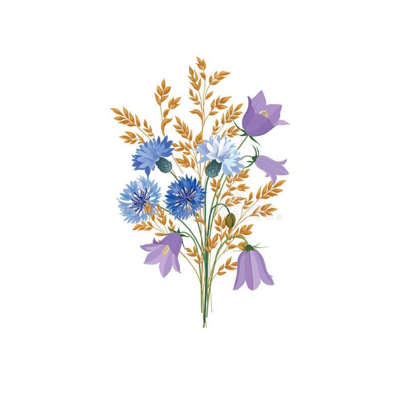 kwiaty odizolowane Kwiecisty lato bukiet Łąkowy natura wystroju dowcip ilustracji
