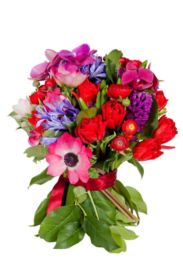 Kwiaty odizolowywający na białym tle fotografia royalty free