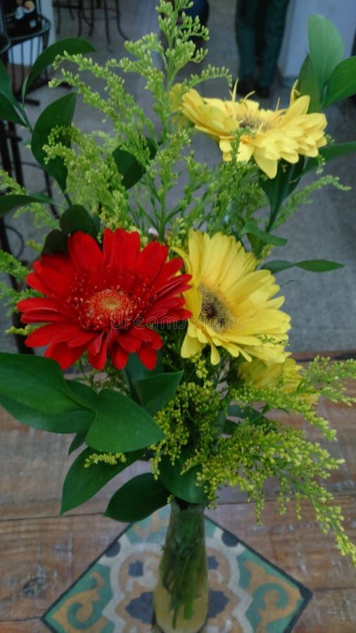 kwiaty ogrzeją obrazy royalty free