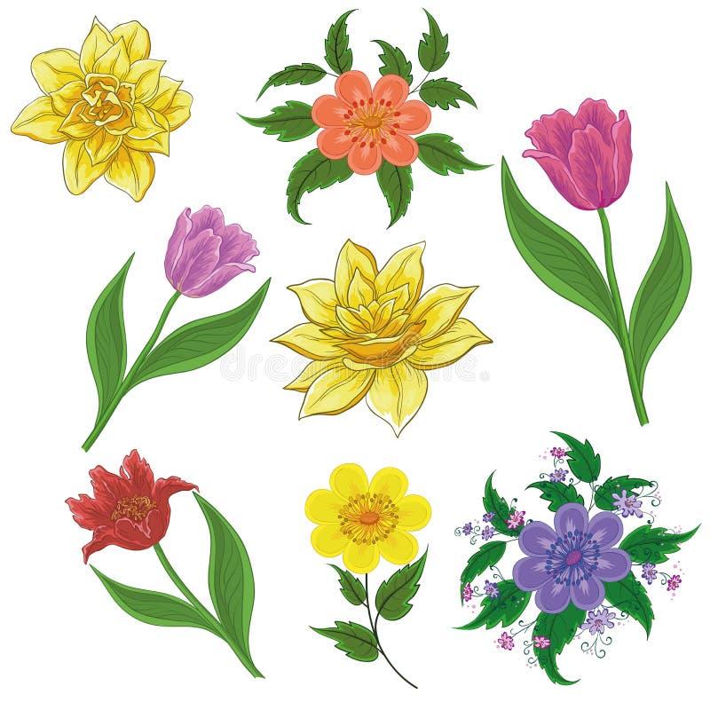 Kwiaty, set royalty ilustracja