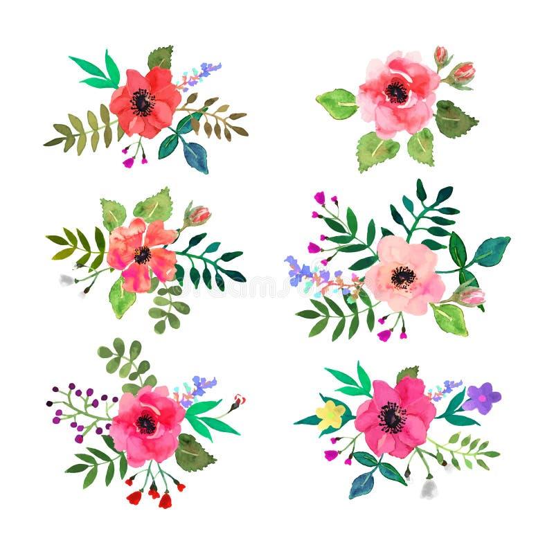 kwiaty ustawiający wektor Kolorowa kwiecista kolekcja z liśćmi i f royalty ilustracja
