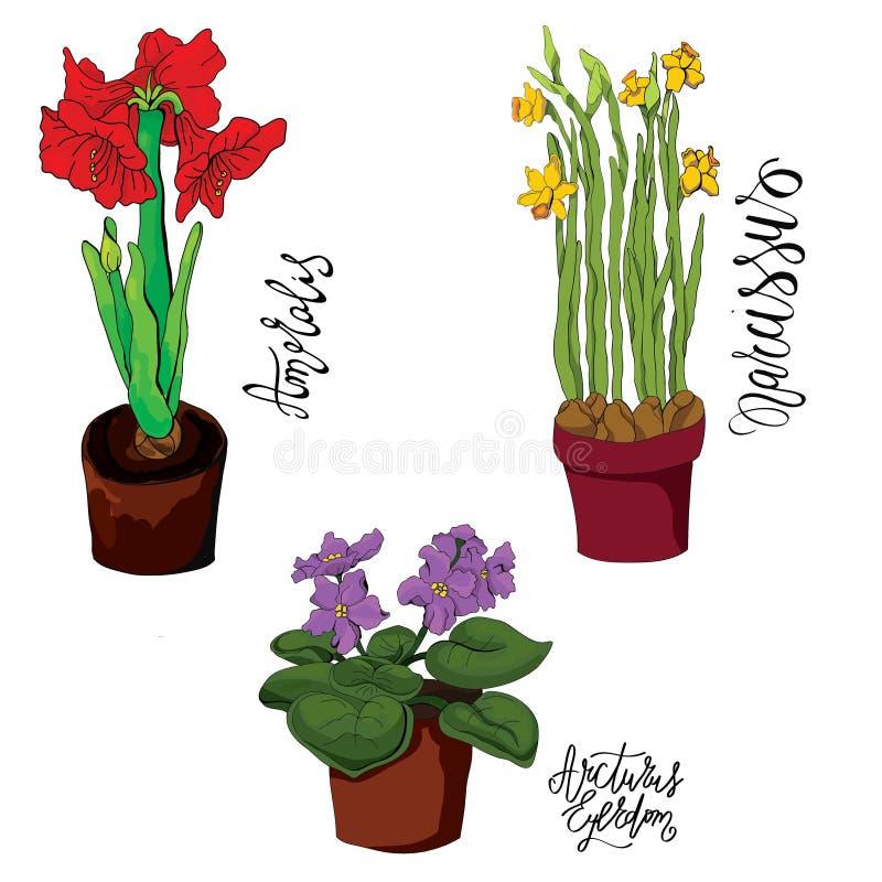 Kwiaty w garnka tle royalty ilustracja