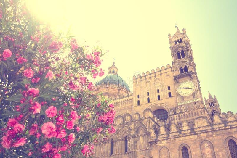 Kwiaty w kwiacie przy Palermo, Sicily kościół obraz stock