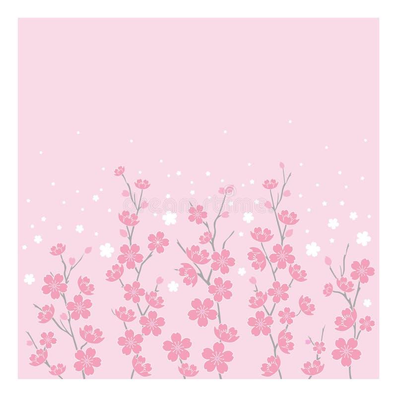 kwiaty wiśni poziomej ilustracja wektor