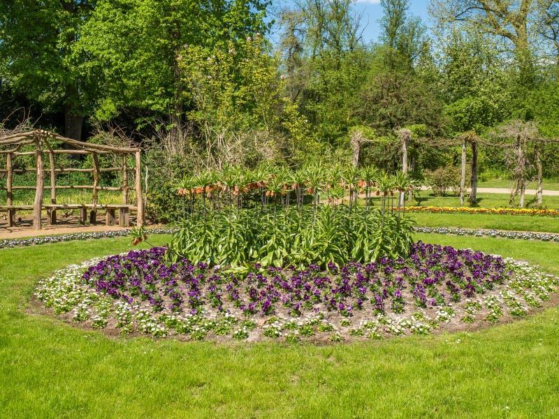 Kwiaty zasadzający w okręgu w parku zdjęcie stock