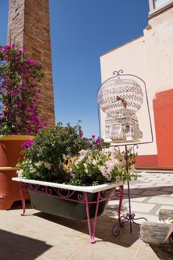 Kwiaty zasadzający w starej wannie obrazy royalty free