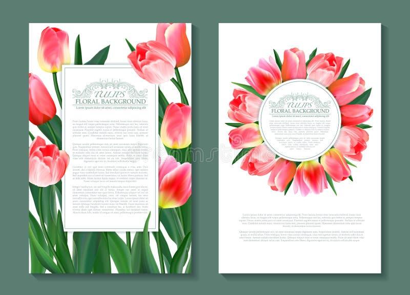 Kwieciści wiosna szablony z ślicznymi menchiami kwitną tulipany Dla romantycznego i biznesowego projekta, zawiadomienia, kartka z royalty ilustracja