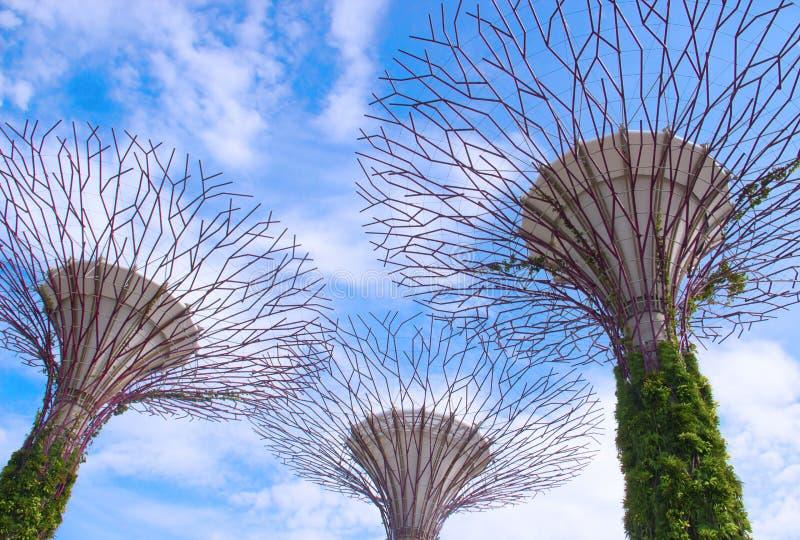 Kwiecień 6, 2014: Ogródy zatoką, Singapur obraz stock