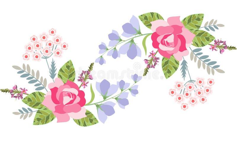 Kwiecista granica z wzrastał, dzwonkowy kwiat, szałwie i turecki goździk odizolowywający na bielu, również zwrócić corel ilustrac royalty ilustracja