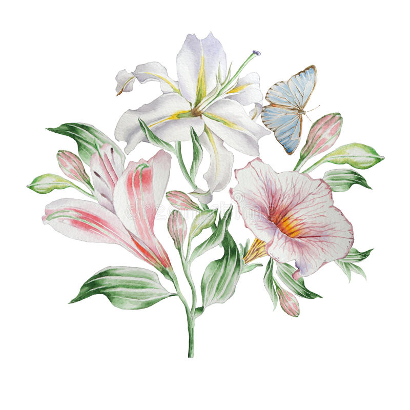 Kwiecista karta z kwiatami lilia Alstroemeria Motyl beak dekoracyjnego latającego ilustracyjnego wizerunek swój papierowa kawałka royalty ilustracja