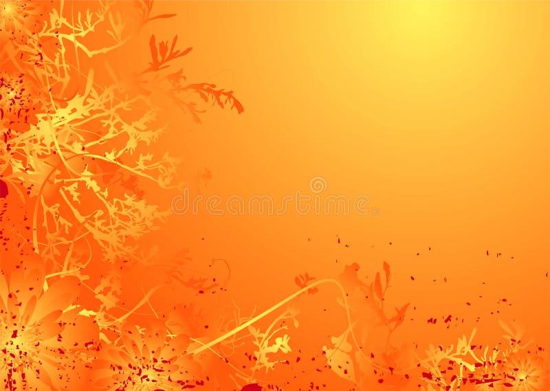 kwiecista pulchna pomarańcze royalty ilustracja