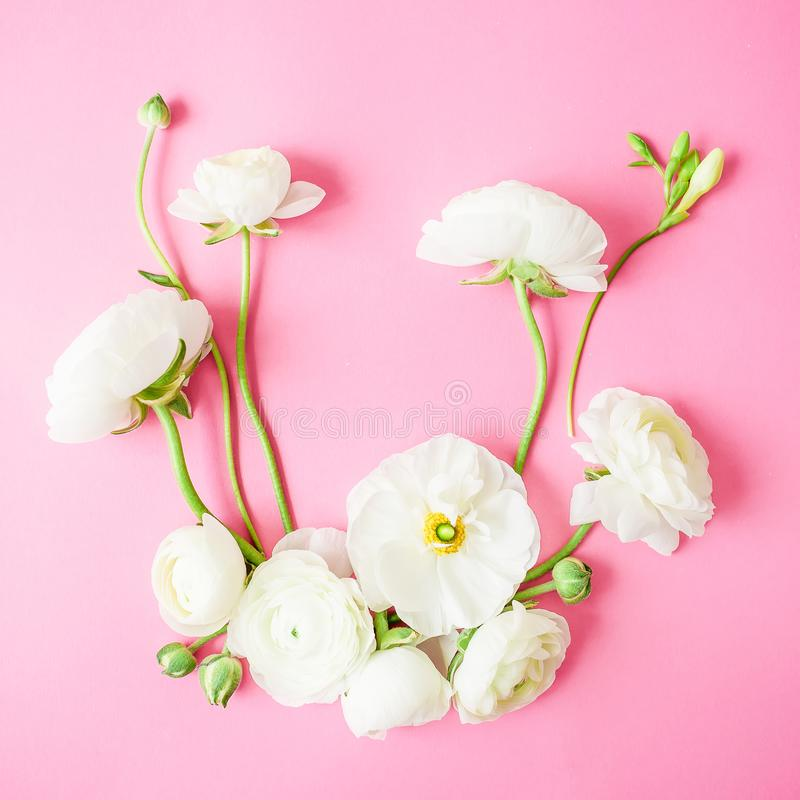 Kwiecista rama robić biali kwiaty na różowym tle Mieszkanie nieatutowy, odgórny widok tło mleczy spring pełne meadow żółty fotografia royalty free