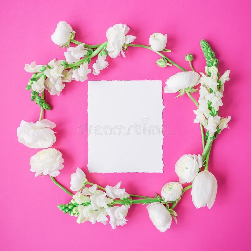 Kwiecista rama robić biali kwiaty, pączki i biała papierowa karta, na różowym tle Mieszkanie nieatutowy, odgórny widok zdjęcie royalty free