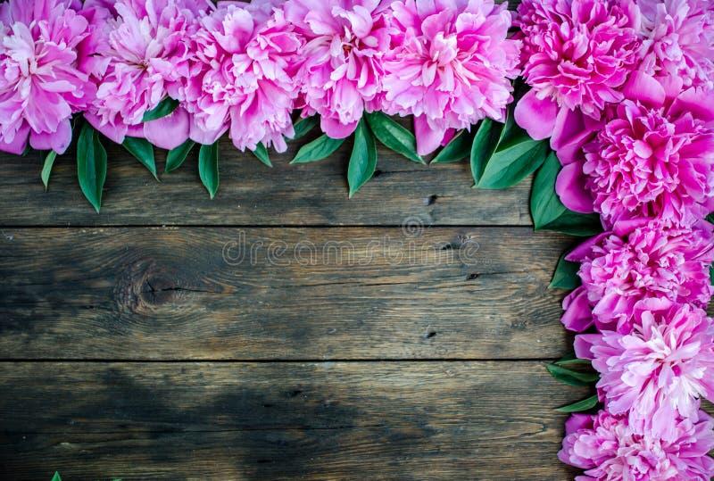 Kwiecista rama z różowymi peoniami kwitnie na drewnianym tle Selekcyjna ostrość, miejsce dla teksta, odgórny widok fotografia stock