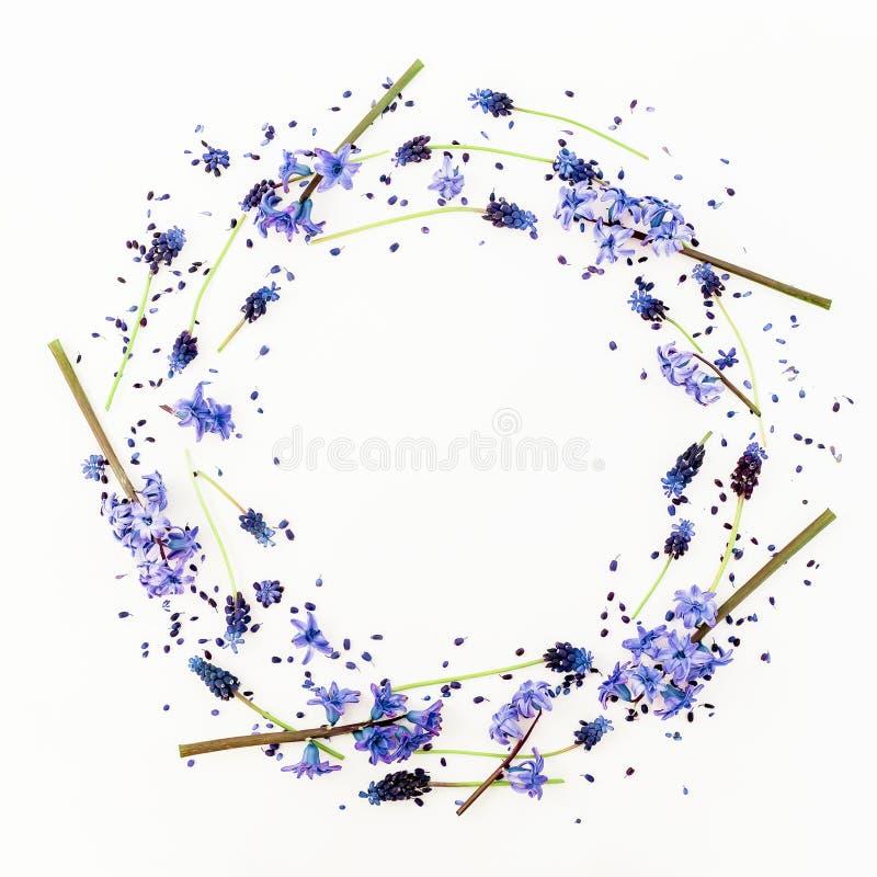 Kwiecista rama z wiosna kwiatami i różowym hiacyntowym kwiatem na białym tle Mieszkanie nieatutowy, odgórny widok obraz royalty free