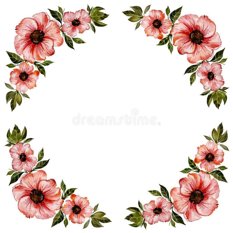 Kwiecista ramowa ilustracja Piękna rewolucjonistka Kwitnie z zielonymi liśćmi Round wzór na białym tle z przestrzenią dla twój te ilustracji