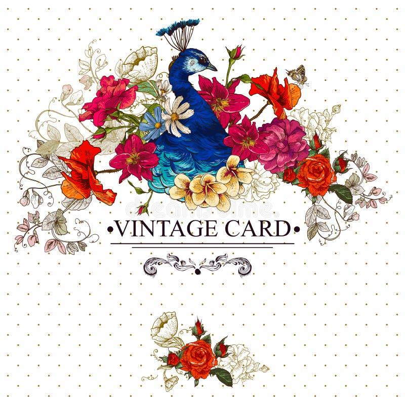 Kwiecista rocznik karta z pawiem royalty ilustracja