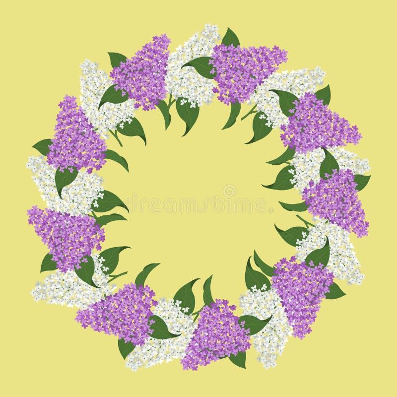 Kwiecista round rama od bzu Biały i purpurowy bez kwitnie z zielonymi liśćmi na żółtym tle royalty ilustracja