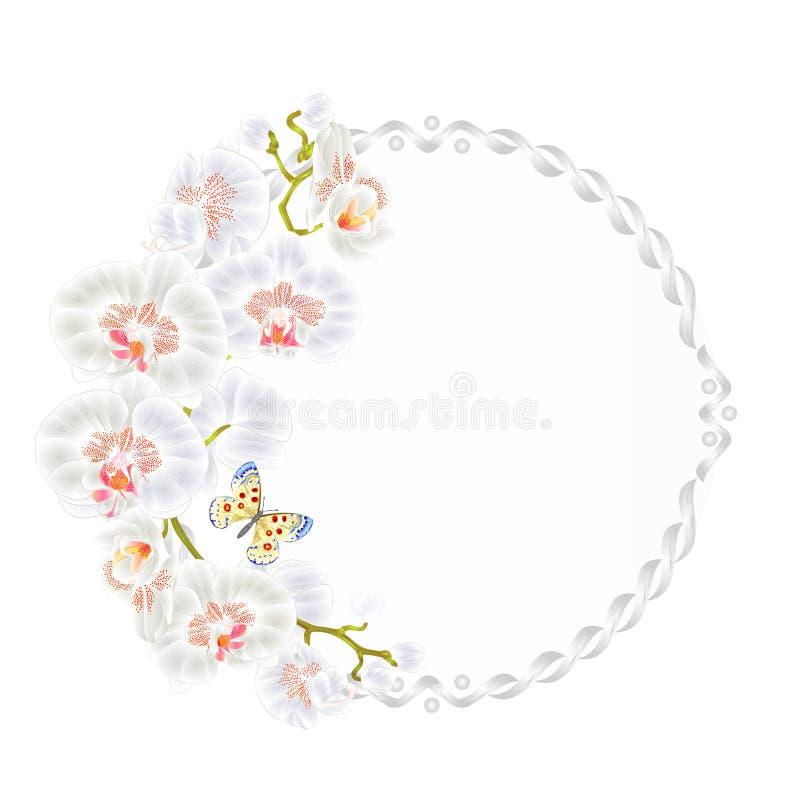 Kwiecista wektorowa round rama z orchidea Białych kwiatów tropikalnych rośliien Phalaenopsis i ślicznym małym motylim rocznikiem ilustracja wektor