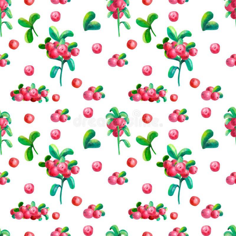 Kwieciste akwareli ilustracje Kolorowa bezszwowa deseniowa tapeta z gałąź, liśćmi i brusznicowymi jagodami na bielu, royalty ilustracja