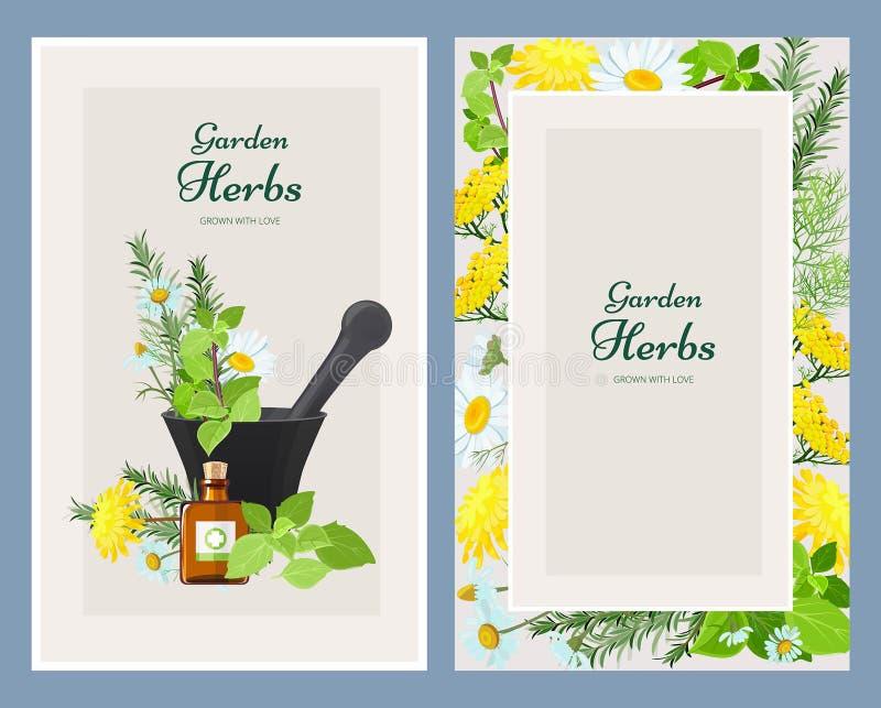 Kwieciste karty Herbalism medycyny produktów kwiatów i ziele dziki rocznik projektuje wektorowego szablon ilustracja wektor