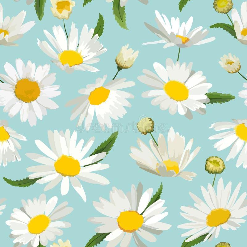 Kwiecisty Bezszwowy wzór z Chamomile kwiatami Naturalny tło z stokrotka kwiatami dla wiosny lata projekta tapety ilustracja wektor