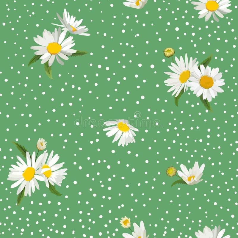 Kwiecisty Bezszwowy wzór z okwitnięcie stokrotki kwiatami Tkaniny natury wiosny tło z Chamomile dla tkaniny, Tapetowy opakowanie royalty ilustracja