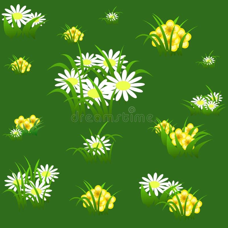 Kwiecisty bezszwowy wzór z chamomiles i zielenią opuszcza na ligh royalty ilustracja