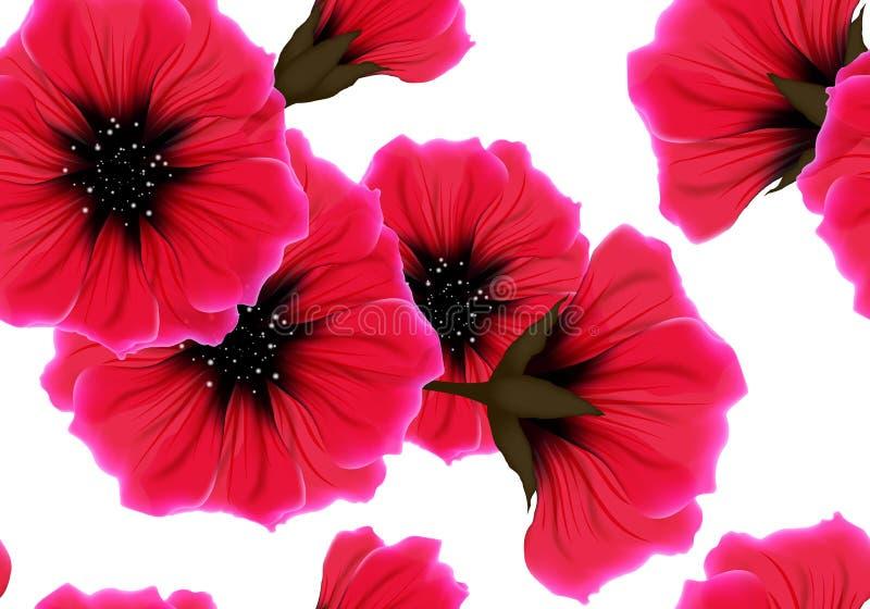 Kwiecisty bezszwowy wzór z czerwonym kwiatem i menchia płatkiem na bielu Jaskrawego żywego koloru wielostrzałowy pasyjny tło ilustracja wektor