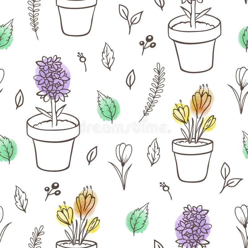 Kwiecisty bezszwowy wzór z houseplants ilustracji